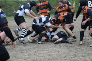 Rugby-Ascoli